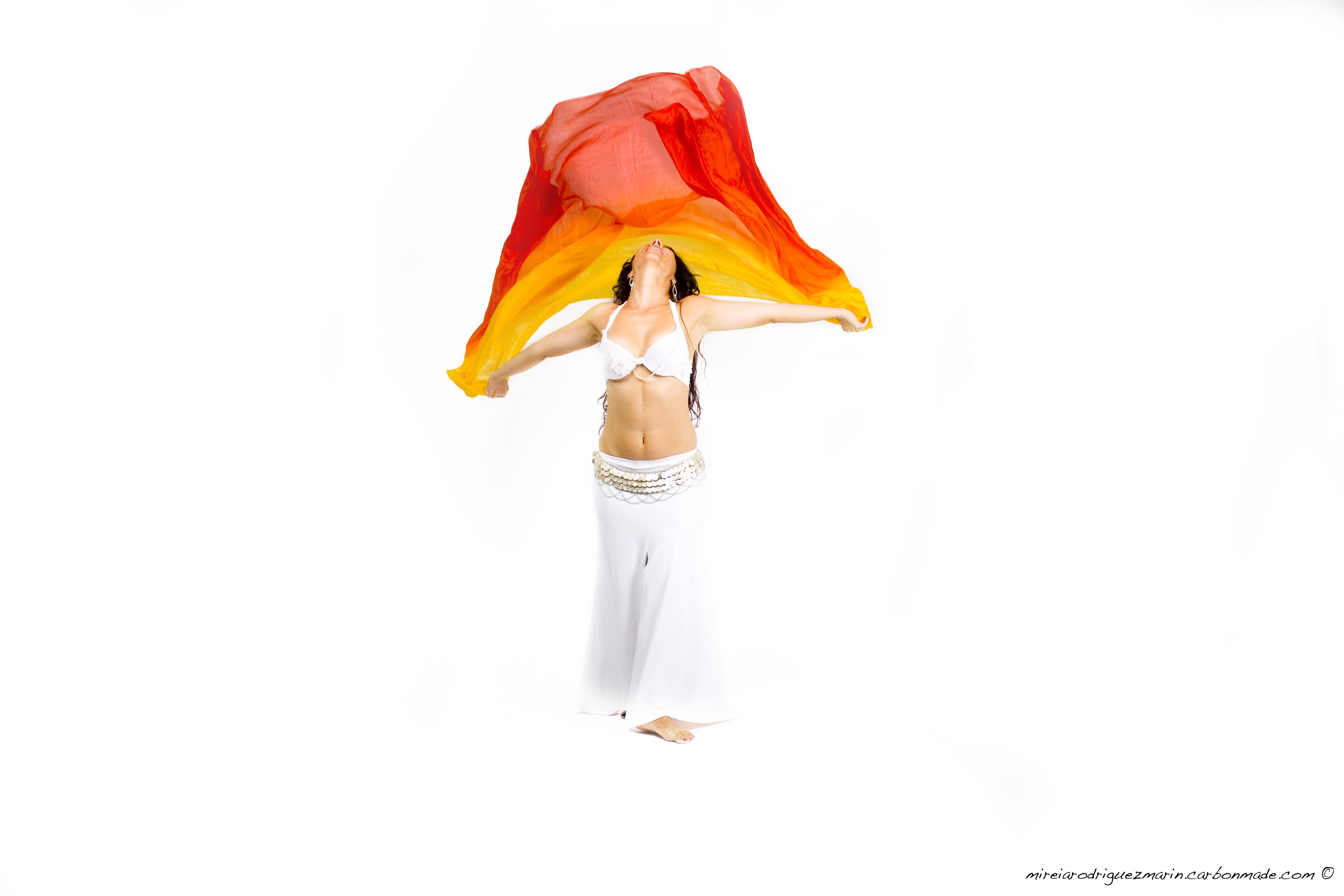 www.danzarabic.com